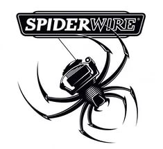 Spiderwire (Спайдервайр)