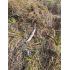 Отзыв на Спиннинг NAUTILUS T-KILLER T-KS-742MH фото №1